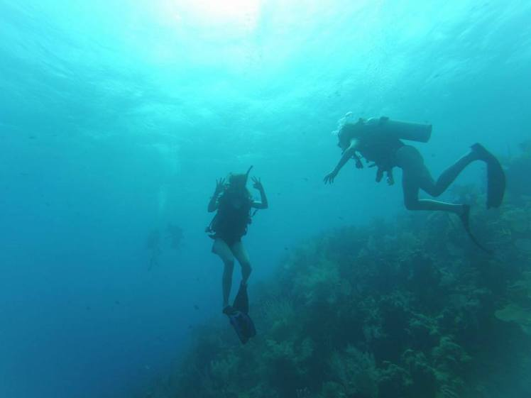 Travel Guide Utila Island Caribbean Honduras Central America Scuba Diving