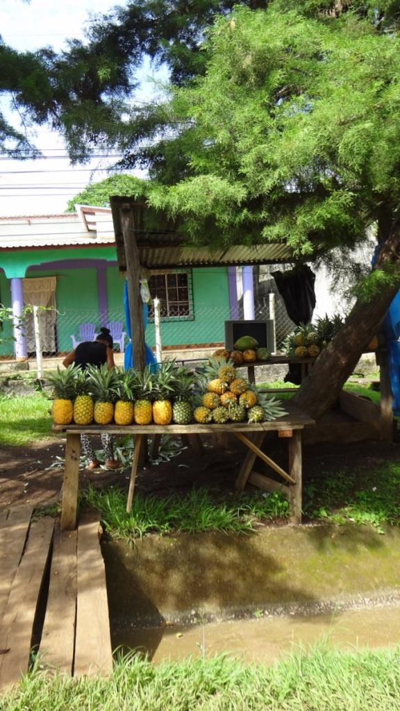 Travel Guide Honduras Central America