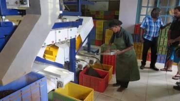 A Guide to Sri Lanka Ella Tea Factory Tea Fields Tea Plantation