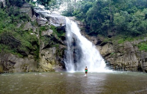 A Guide to Sri Lanka Ella Waterfall Jungle